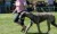phoca_thumb_s_20150920-_DSC0239.jpg
