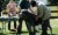 phoca_thumb_s_20150920-_DSC0317.jpg