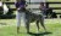 phoca_thumb_s_20150920-_DSC0409.jpg