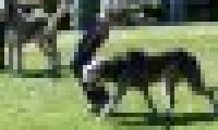 phoca_thumb_s_20150920-_DSC0469.jpg