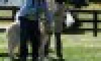 phoca_thumb_s_20150920-_DSC0566.jpg