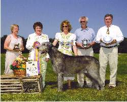 Merlin Wins BOB at IWANE 2005