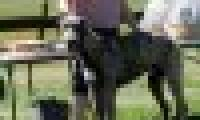 phoca_thumb_s_20150920-_DSC0271.jpg